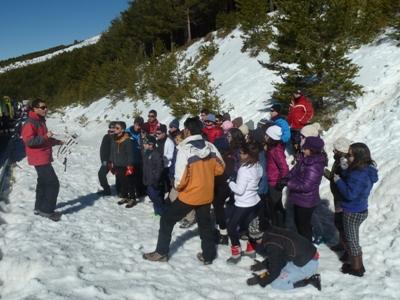 sierra nevada 14-2